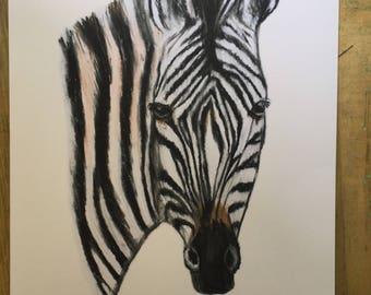 Zebra, wall art, for zebra lovers, zebra art, a4 print , zebras