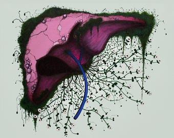 Liver & Gallbladder with Thyme -Print-
