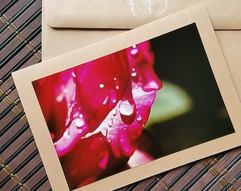 Rose Petal Blank Photo greeting card