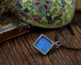 Real butterfly necklace Butterfly taxidermy Jewelry idea wife Butterfly wing jewelry Nature jewelry woman Blue Mopho Insect jewelry
