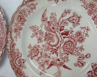 Red Transferware Bristol Crown Ducal England China Dinnerware
