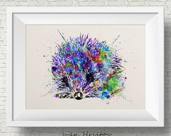 Colorful Hedgehog Watercolor hedgehog painting illustration hedgehog Art Print Wall Gift Poster Giclee Wall Decor Home Decor Wall Hanging
