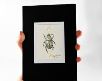 """Original Ink Painting ACEO Beetle, Entomology, Matted and Ready to Fit in a 5x7"""" Frame"""