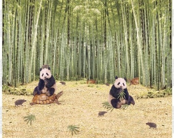 Jersey, Stenzo, cloth panel-Panda, Turtle and hedgehog in the Bamboo Forest