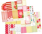 Planner Sticker Kit / Big Happy Planner Stickers / Weekly Sticker Kit / Planner Stickers / BHP49