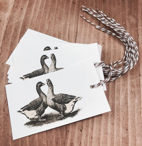 farm geese gift/favor tags 8 count