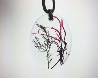 Seaweed resin pendant necklace