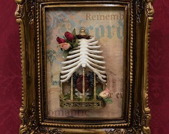 Ribcage picture. Winged heart. Cage with heart. Bones picture. Skeleton picture.