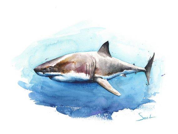 SHARK PAINTING watercolor shark art great white shark  Great White Shark Painting