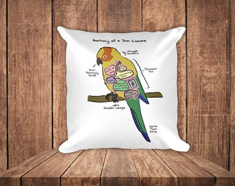 Anatomy of a Sun Conure - Funny Sun Conure Square Pillow