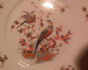 Bohemia Bird of Paradise China Plates