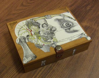 Anatomical Oddity Art Vintage Card/Trinket Box - Medical Curio