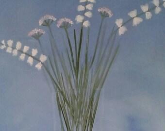 Fleurs Blanches Bouquet