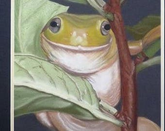 Frog painting with pastels wall Decor
