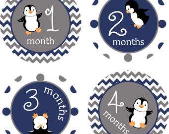 Monthly Baby Stickers, Milestone Stickers, Baby Boy Penguins, Baby Shower Gift, Baby Stickers, Baby Month Sticker, Navy and Grey, Photo Prop
