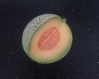 Cantaloupe Magnet Fruit and Veggies Polymer Clay Foods Kitchen Decor