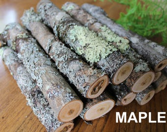 Large Mossy Maple Branches / 10'' Maple Sticks Covered in Lichen / Lichen Covered Sticks/ Terrarium Sticks