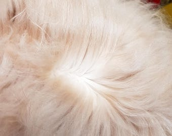 65 g Angora wool, 5-month cutting of Skrutten,red/yellow,Made in Sweden,bunny fluff for felting or decorating, pure angora baby rabbit fibre