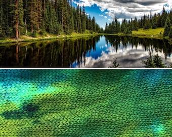 Woodland Sock Blank, indie dyed merino nylon yarn in autumn colours