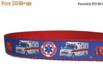 "SALE EMT Ambulance Nylon Dog Collar * 1"" Width Only * Buckle Collar * Martingale Collar * Chain Martingale"