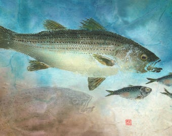 Gyotaku Print of Striped Bass with Chasing  Bait