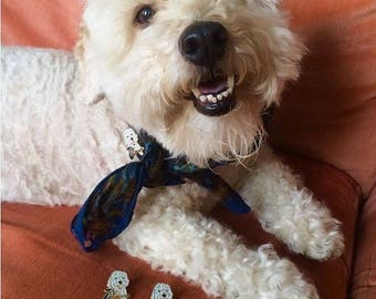 MOFIES DAWG pin • Best Friends Animal Society Donation