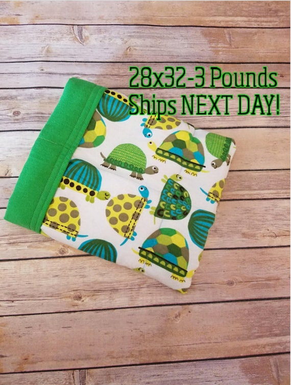 Turtle, 3 pound, WEIGHTED BLANKET, Ready To Ship, 3 pounds, 28x32 for Autism, Sensory, ADHD, Calming, Anxiety,