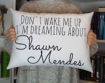 16 color options - Don't wake me up I'm dreaming about Shawn Mendes- pillow with filling
