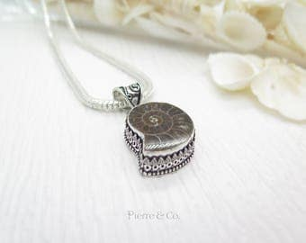 Ammonite Fossil Sterling Silver Pendant and Chain