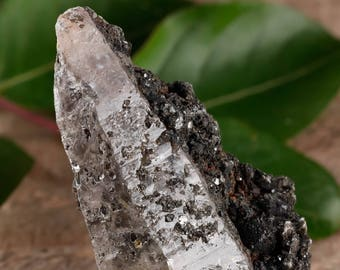 One XXL WITCHES FINGER Raw Quartz Crystal - Raw Quartz Point, Healing Crystal, Healing Stone, Meditation Crystal, Rocks and Gems E0484