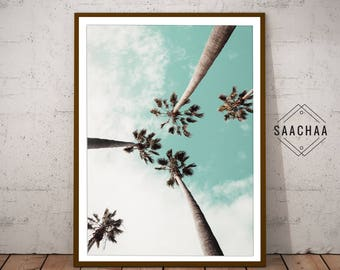 Delightful Palm Tree Wall Art, Palm Photography, Palm Poster, Palm Tree Photo, Palm Part 24