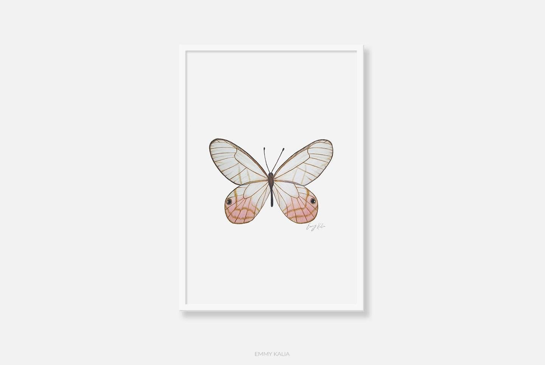 butterfly wall art art print pencil drawing butterfly