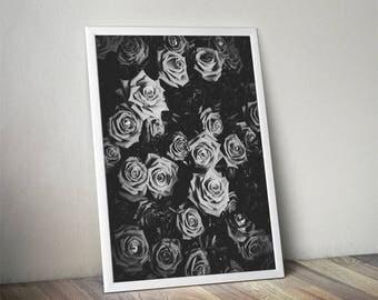 Rose print, botanical print, botanical art, flower print, plant print, flower photography, black and white, roses print, peony, floral print
