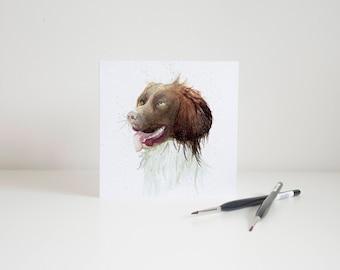 Watercolour Springer Spaniel Greetings Card