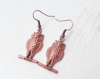 Owl earrings. Perched owl earrings. Owl bird earrings. Owl jewellery gift. Brown owl. Ornithology
