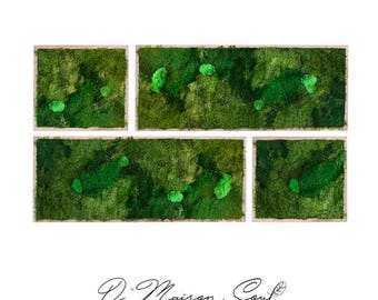 Moss Wall Art Collage x4 Pieces. Natural Home Decor. Preserved Moss and Plants.Moss Art.Green Art. Eco Decor.Natural Plant Deco.Plant Decor.