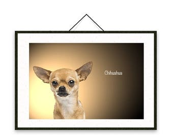 Chihuahua - Dog breed poster, wall sticker, nursery decor, wall print, nursery print, shabby print   Tropparoba - 100% made in Italy