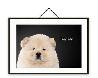 Chow Chow - Dog breed poster, wall sticker, nursery decor, wall print, nursery print, shabby print | Tropparoba - 100% made in Italy