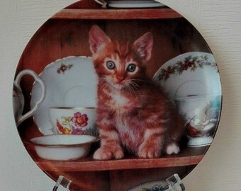 "Collection plate CRESTLEY COLLECTION ""Teatime Tabby"""