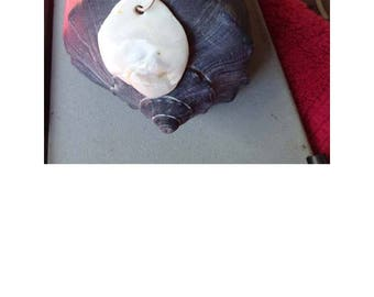 White sea shell necklace