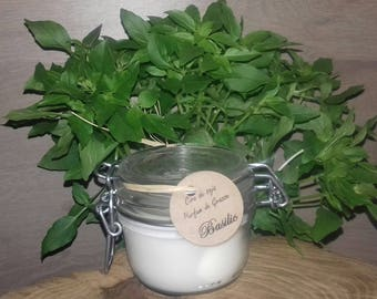 Basil soy wax candle
