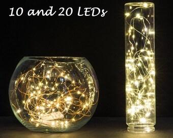 Set of 2, 10 and 20 LEDs Fairy Lights, Wedding Decorations lights, LED Mason Jar light Wedding Decor, firefly Lights, Holiday fairy lights