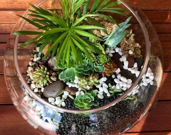 Round Glass Terrarium