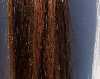 Brown Highlight Hair Ponytail