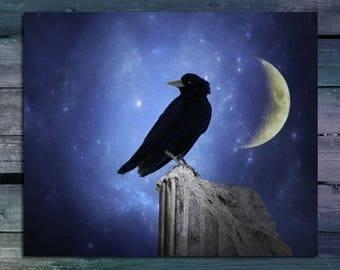 Crescent Moon, Starry Night Sky Print, Raven Photograph, Rook, Blue, Celestial, Blackbird Wall Art, Metallic - Crow And A Crescent Moon