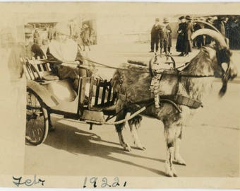 vintage photo Children Goat CArt 1922