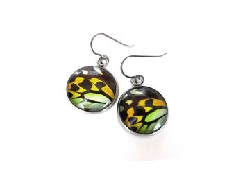 Butterfly wings dangle earrings - Hypoallergenic pure titanium, stainless steel and glass jewelry