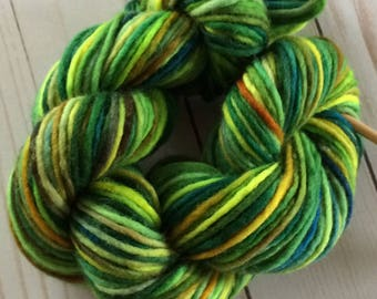 "100 Yards Hand Painted Heavy Worsted/ Aran Weight Singles Yarn, Knitting Yarn, Crochet Yarn, ""Experimental Jungle"" Superwash Merino Singles"
