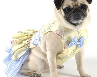 Dog Harness, Dog Dress -Yellow and Blue Gingham
