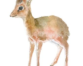 Dik-Dik Antelope Watercolor Painting Giclee Print 5x7 Nursery Art